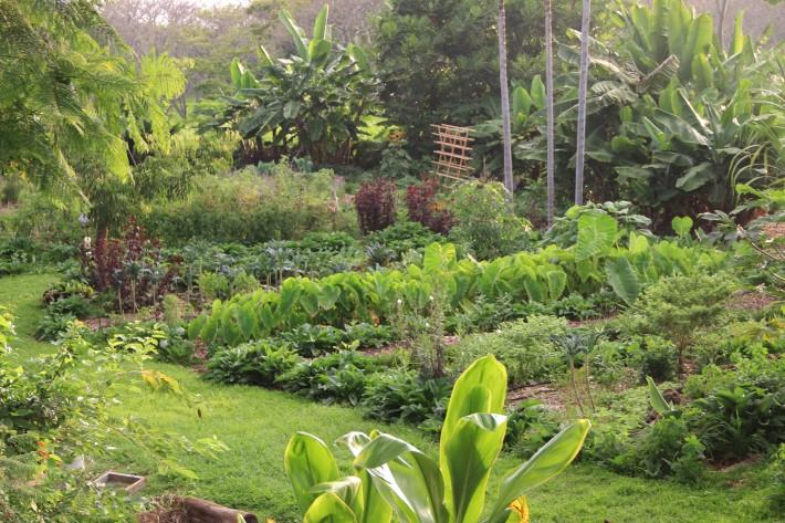 Garden Cottage View